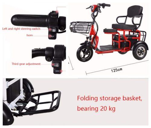 Triciclos electricos potentes adultos caros